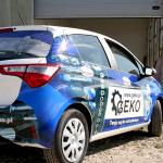 Geko T 004